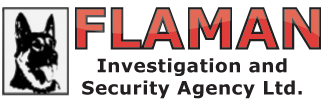 logo-flamansecurity